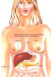 Pancreas_2